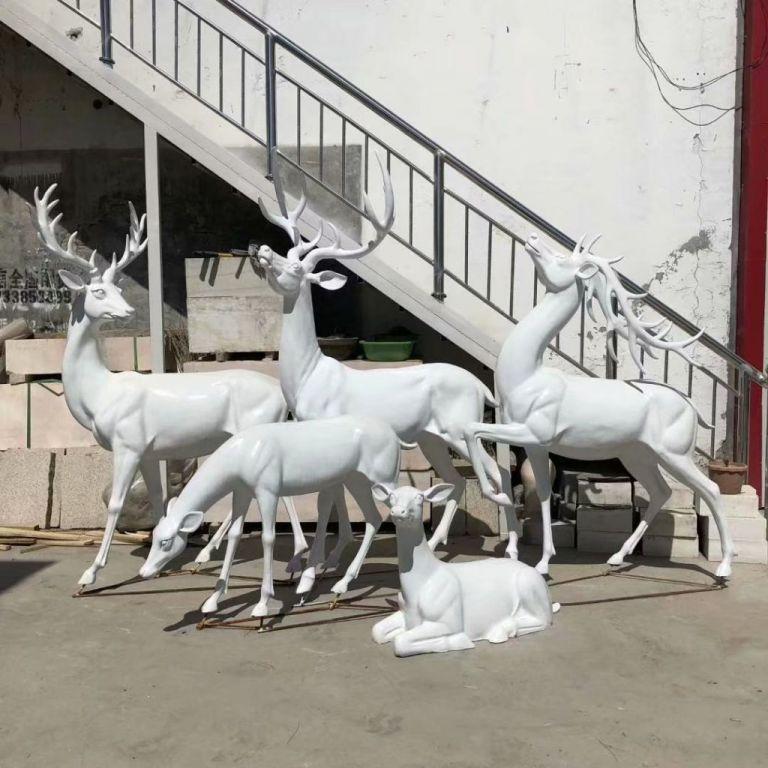 白色小鹿7